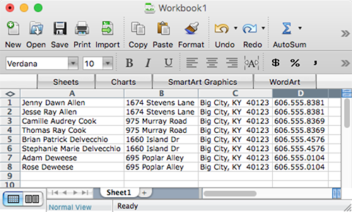 Portion of a report pasted in Excel